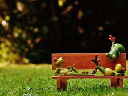 Entspannungs- und Resilienztrainer/in